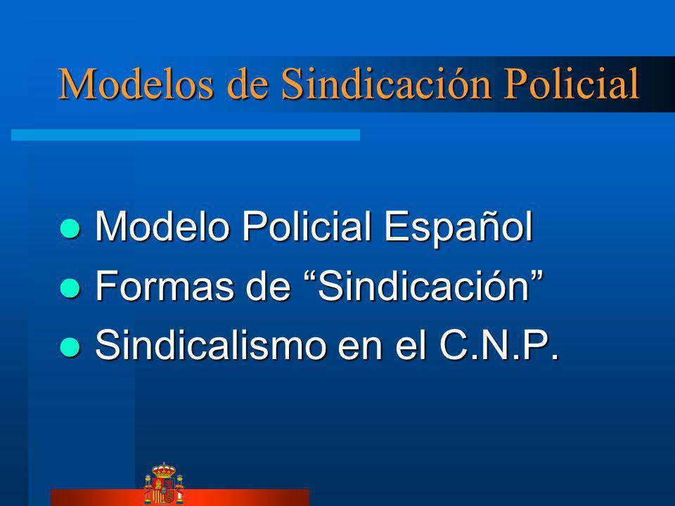 Modelos de Sindicación Policial