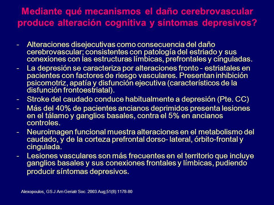 Mediante qué mecanismos el daño cerebrovascular produce alteración cognitiva y síntomas depresivos