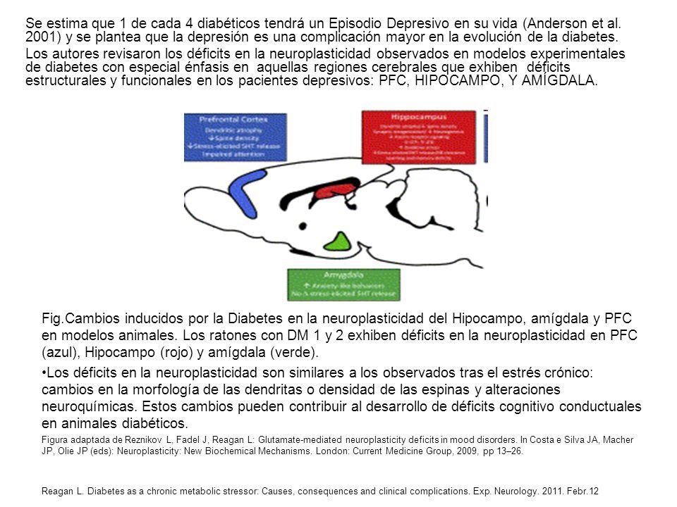 Se estima que 1 de cada 4 diabéticos tendrá un Episodio Depresivo en su vida (Anderson et al. 2001) y se plantea que la depresión es una complicación mayor en la evolución de la diabetes.