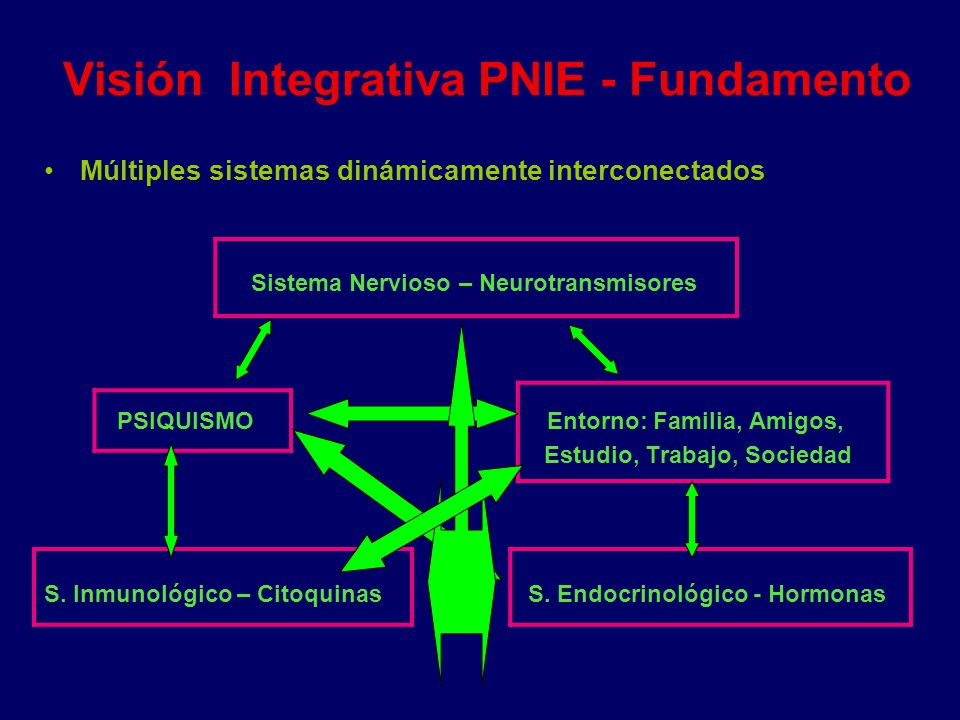 Visión Integrativa PNIE - Fundamento