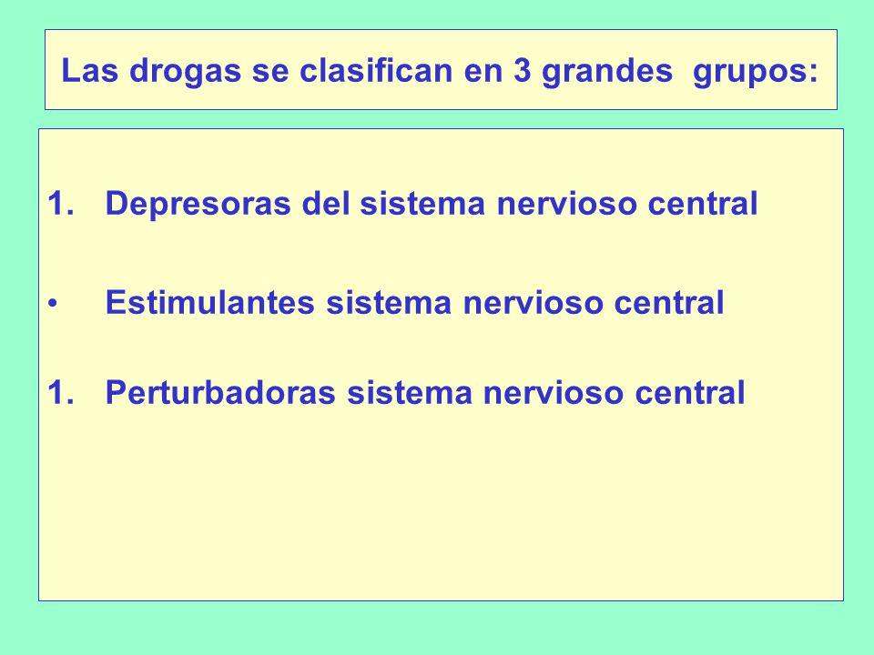 Las drogas se clasifican en 3 grandes grupos: