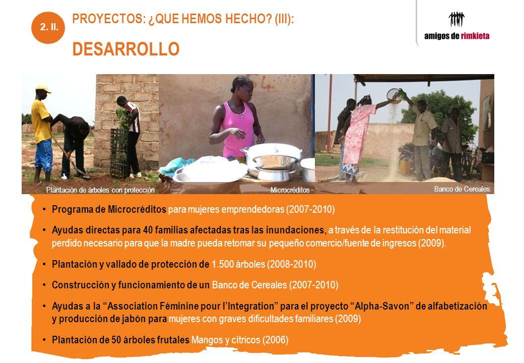 PROYECTOS: ¿QUE HEMOS HECHO (III): DESARROLLO