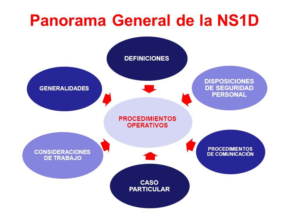 Panorama General de la NS1D