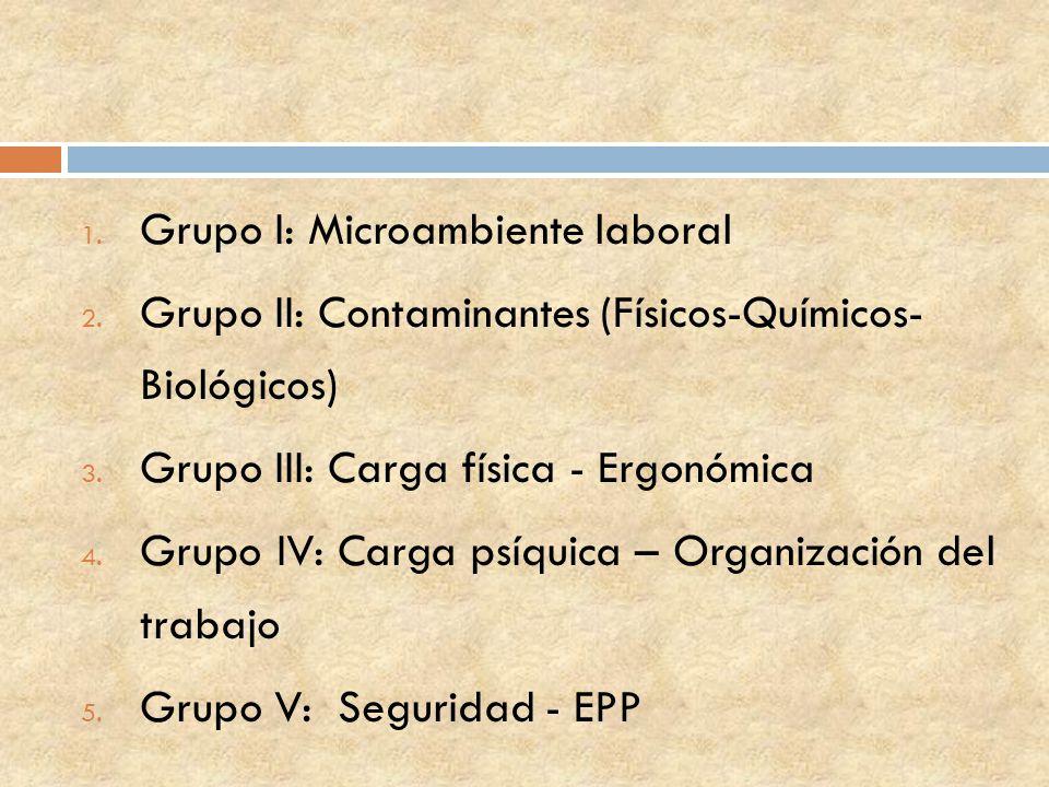 Grupo I: Microambiente laboral
