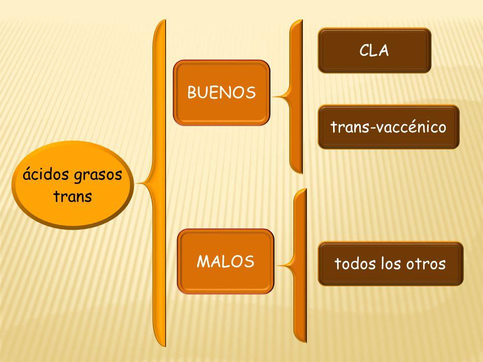 CLA BUENOS trans-vaccénico ácidos grasos trans MALOS todos los otros