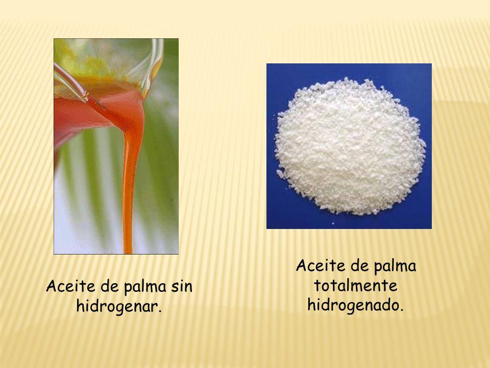 Aceite de palma totalmente hidrogenado.