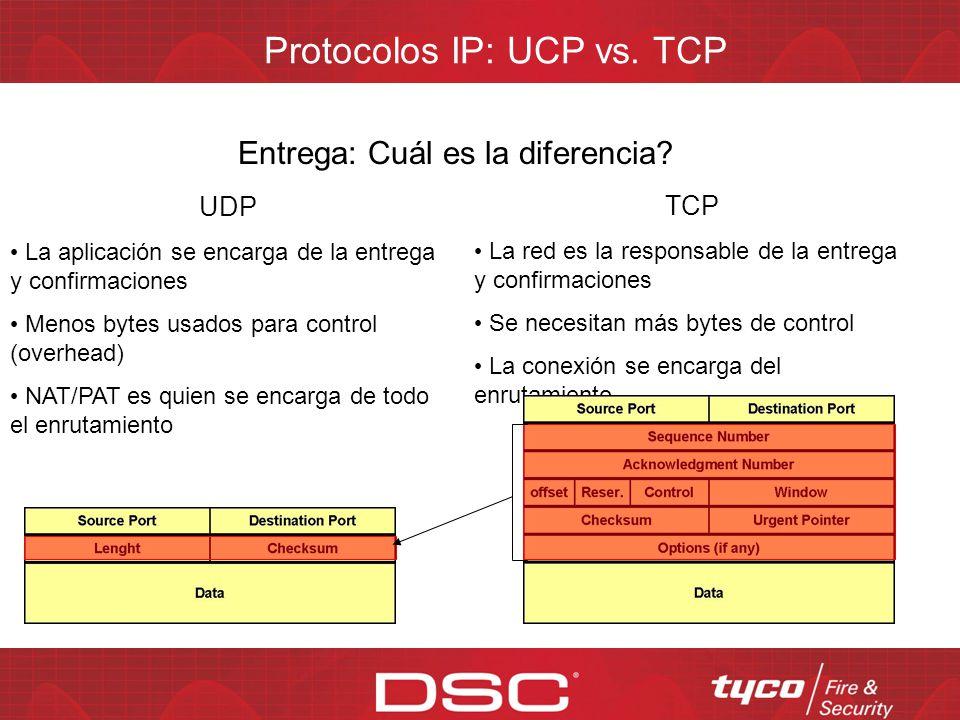 Protocolos IP: UCP vs. TCP