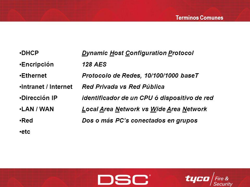 Terminos Comunes DHCP. Encripción. Ethernet. Intranet / Internet. Dirección IP. LAN / WAN. Red.