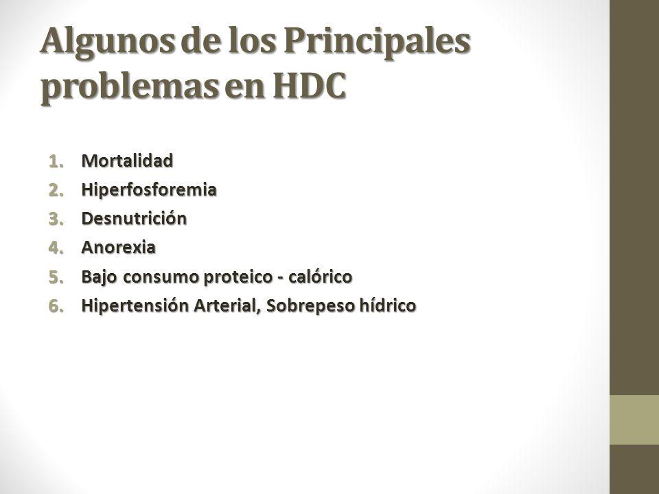 Algunos de los Principales problemas en HDC