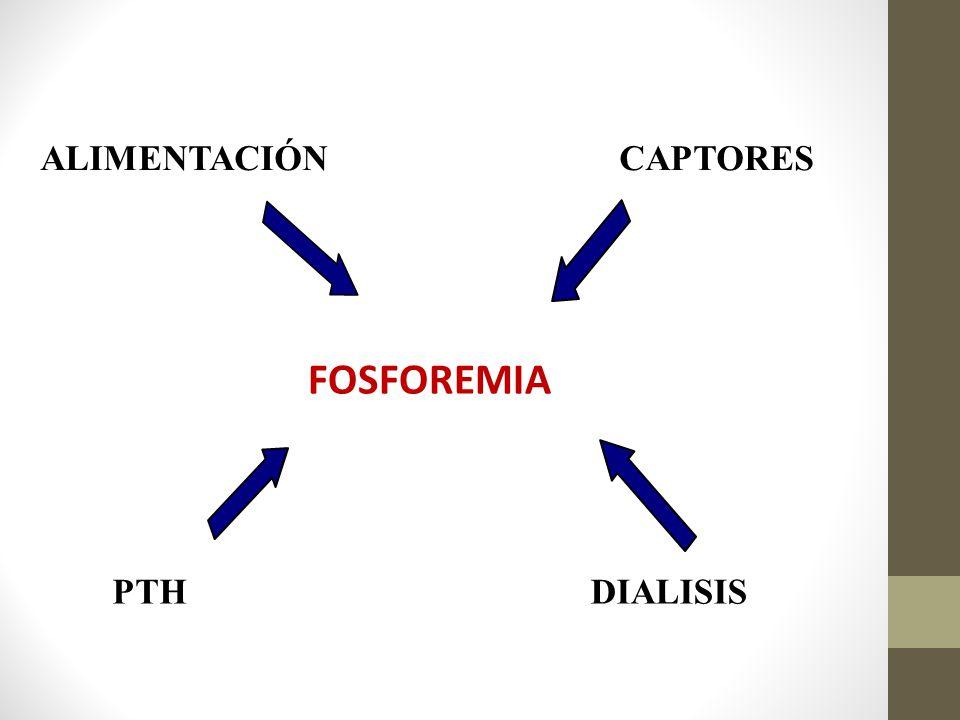 ALIMENTACIÓN CAPTORES FOSFOREMIA PTH DIALISIS
