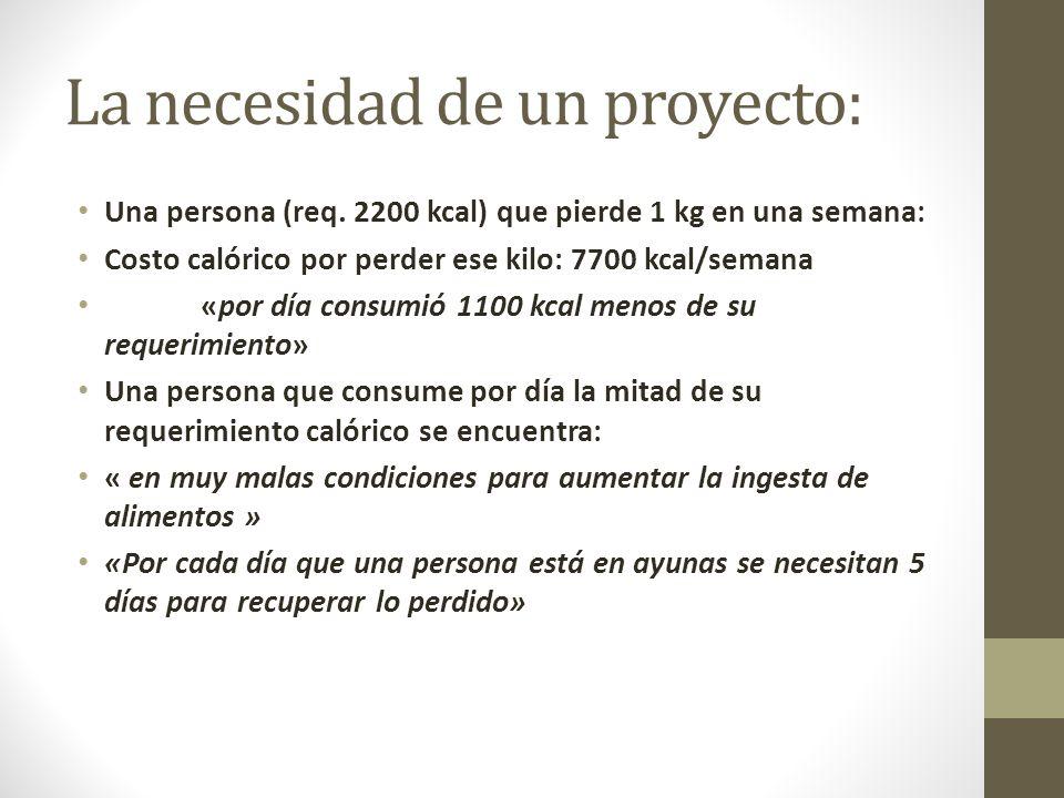 La necesidad de un proyecto:
