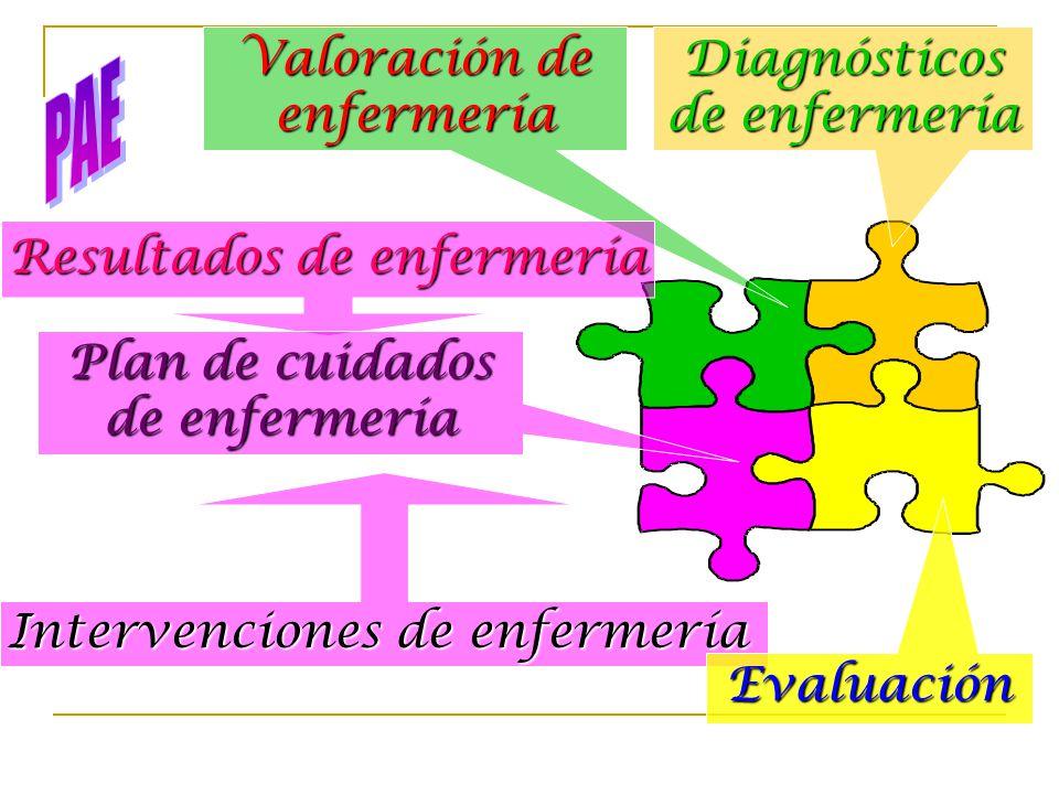 PAE Valoración de enfermería Diagnósticos de enfermería