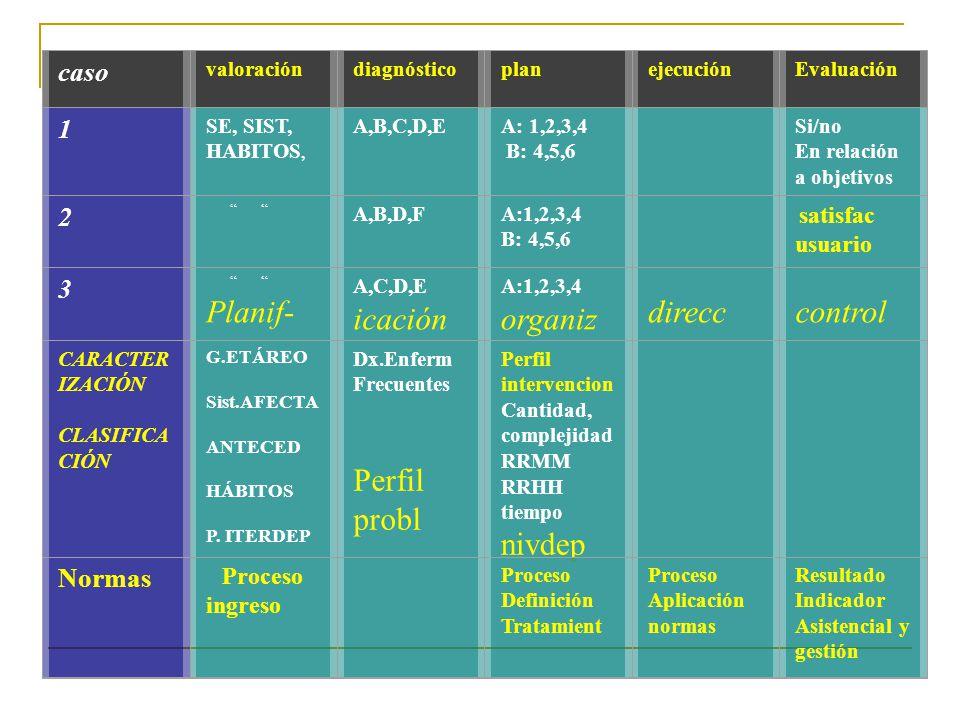 Planif- icación organiz direcc control Perfil probl nivdep caso 1 2 3