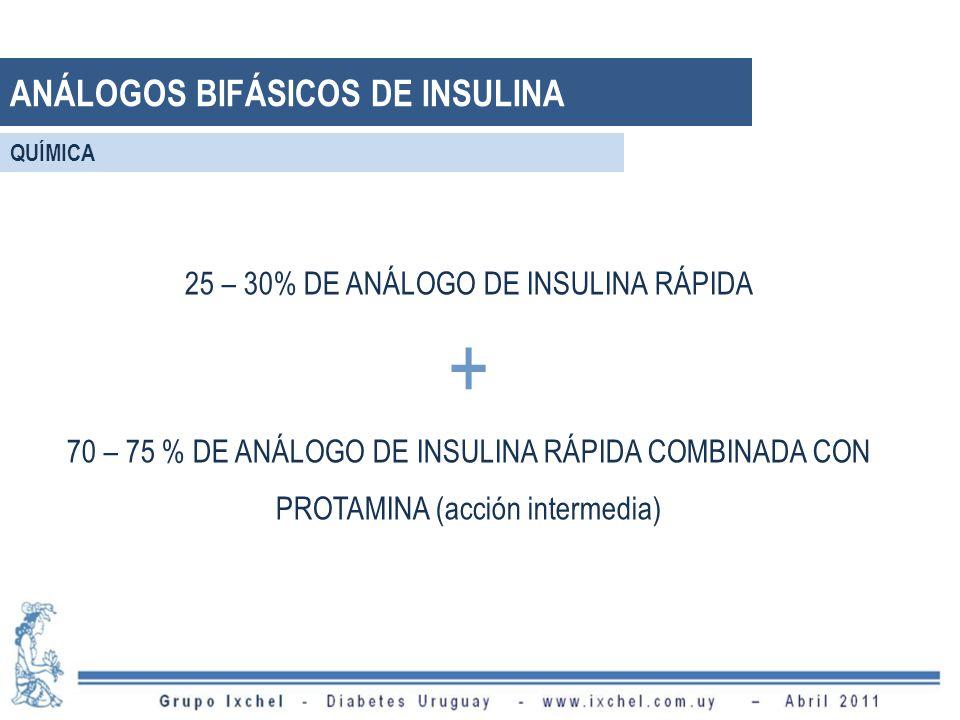 25 – 30% DE ANÁLOGO DE INSULINA RÁPIDA