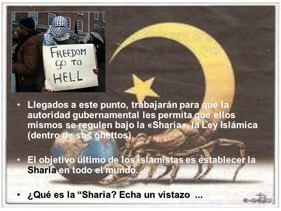 Llegados a este punto, trabajarán para que la autoridad gubernamental les permita que ellos mismos se regulen bajo la «Sharia», la Ley Islámica (dentro de sus ghettos).