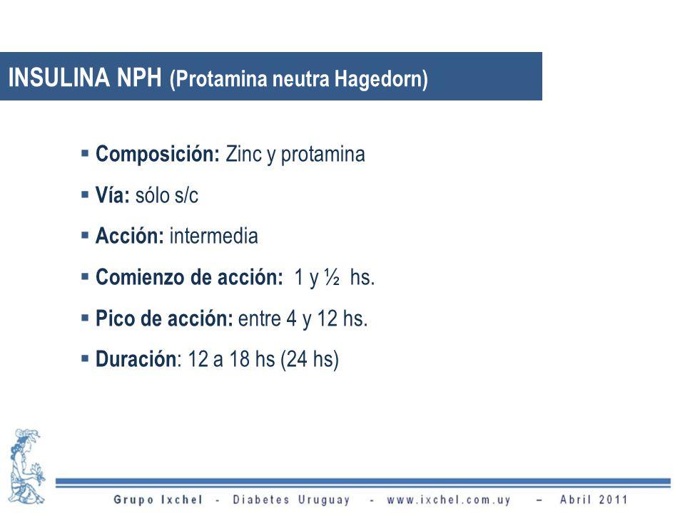 INSULINA NPH (Protamina neutra Hagedorn)