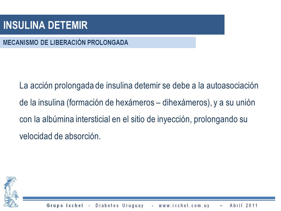INSULINA DETEMIR MECANISMO DE LIBERACIÓN PROLONGADA.