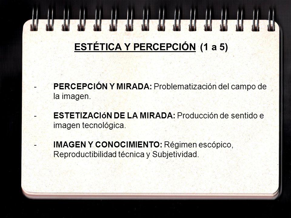 ESTÉTICA Y PERCEPCIÓN (1 a 5)