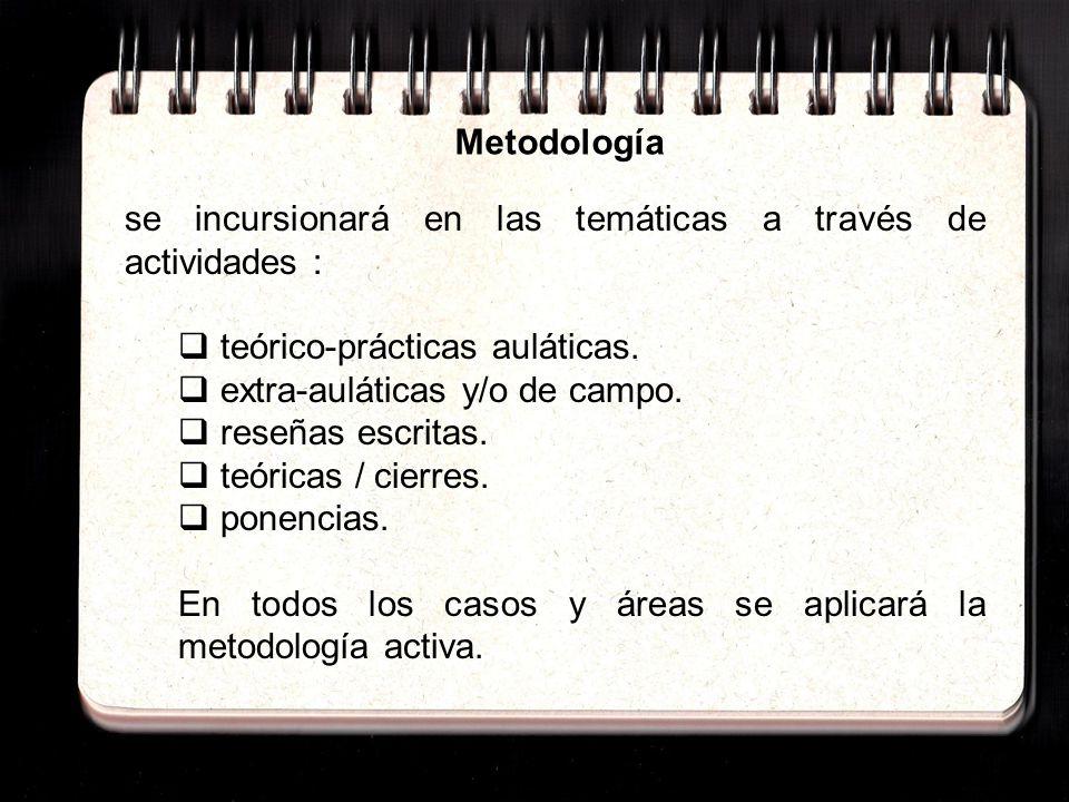 Metodología se incursionará en las temáticas a través de actividades : teórico-prácticas auláticas.