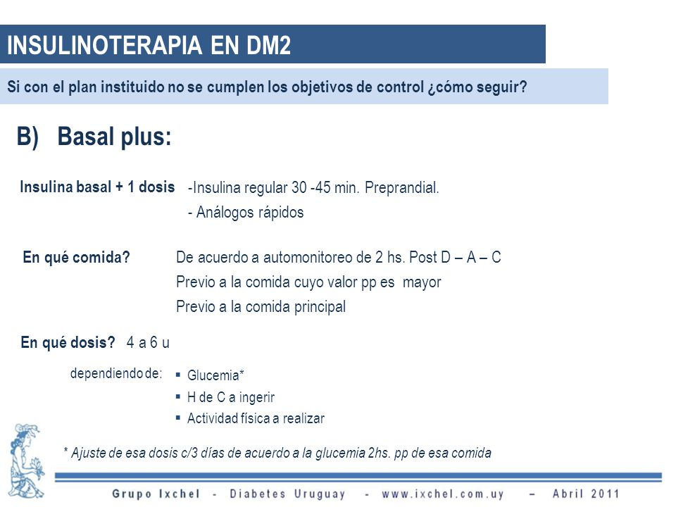 INSULINOTERAPIA EN DM2 B) Basal plus: