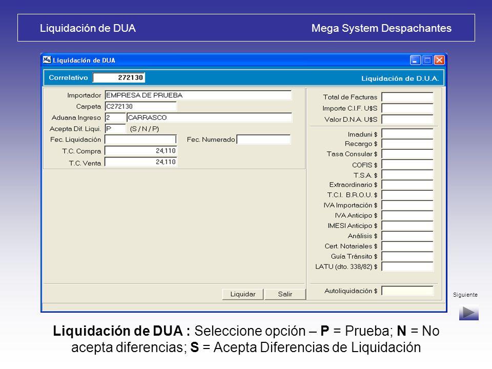 Liquidación de DUA Mega System Despachantes