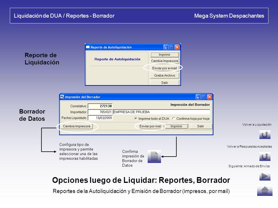 Liquidación de DUA / Reportes - Borrador Mega System Despachantes