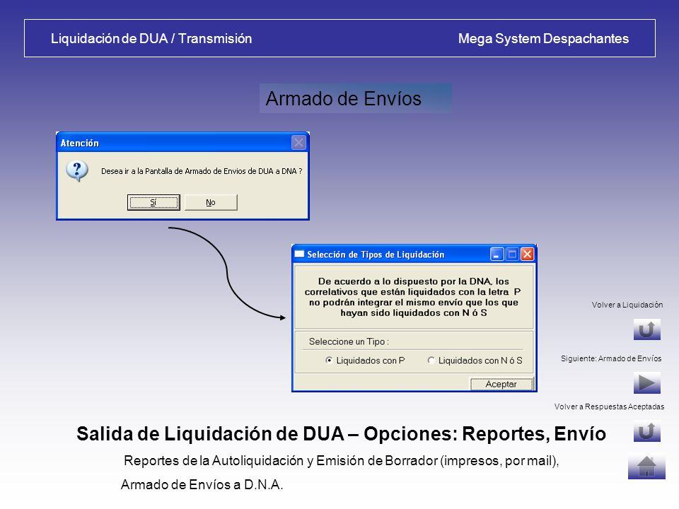 Liquidación de DUA / Transmisión Mega System Despachantes