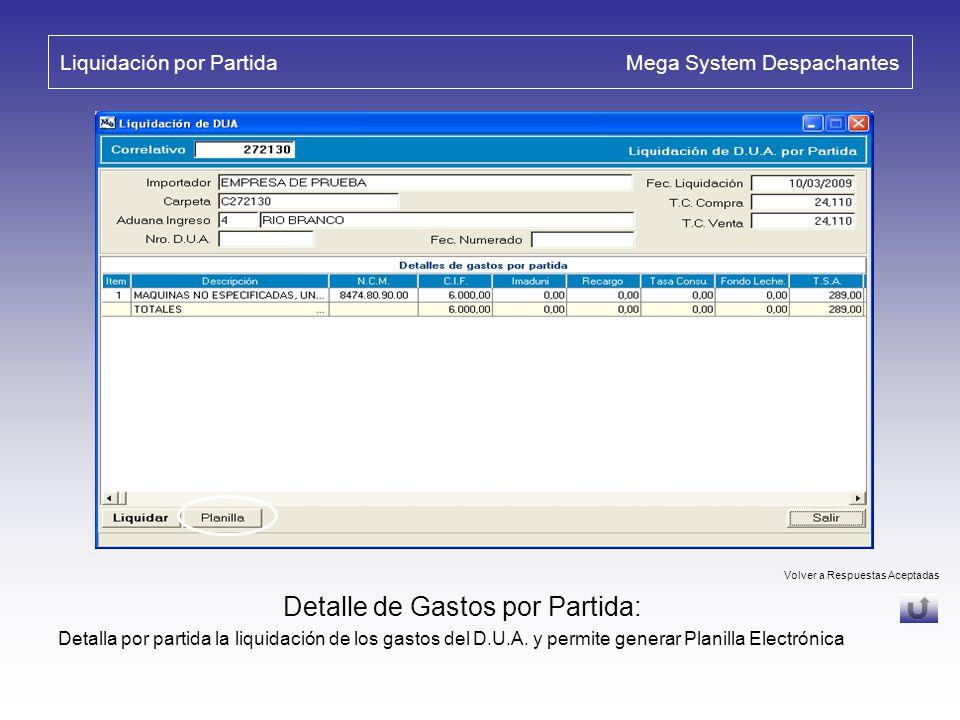 Liquidación por Partida Mega System Despachantes