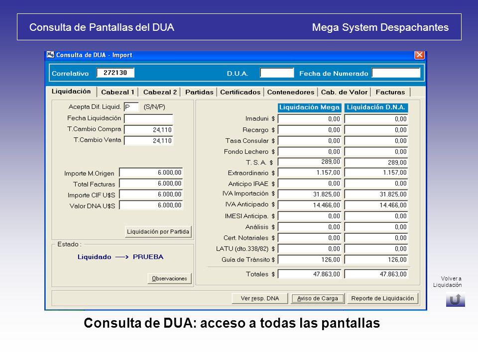 Consulta de Pantallas del DUA Mega System Despachantes