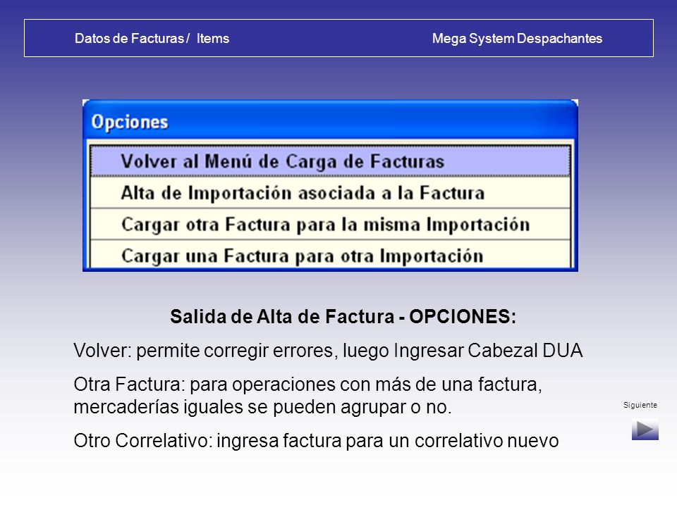 Datos de Facturas / Items Mega System Despachantes