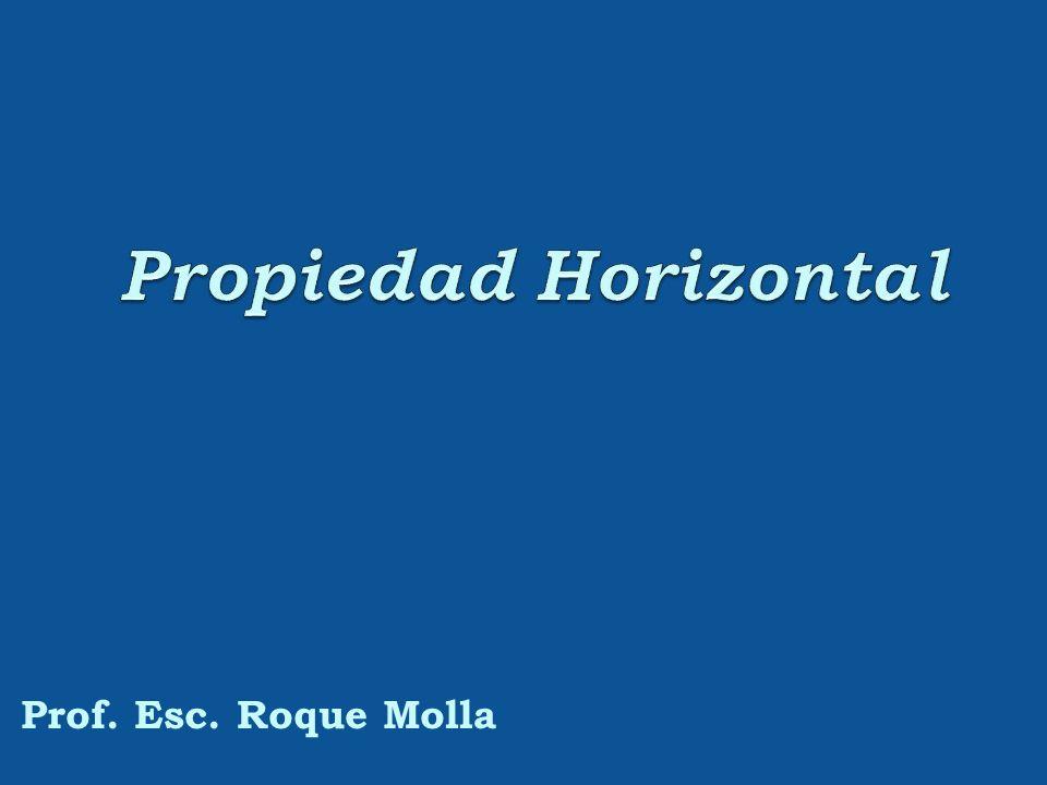 Propiedad Horizontal Prof. Esc. Roque Molla