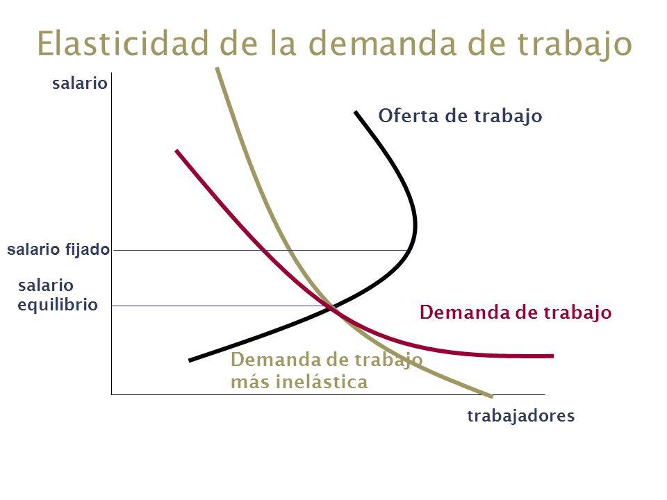 Elasticidad de la demanda de trabajo