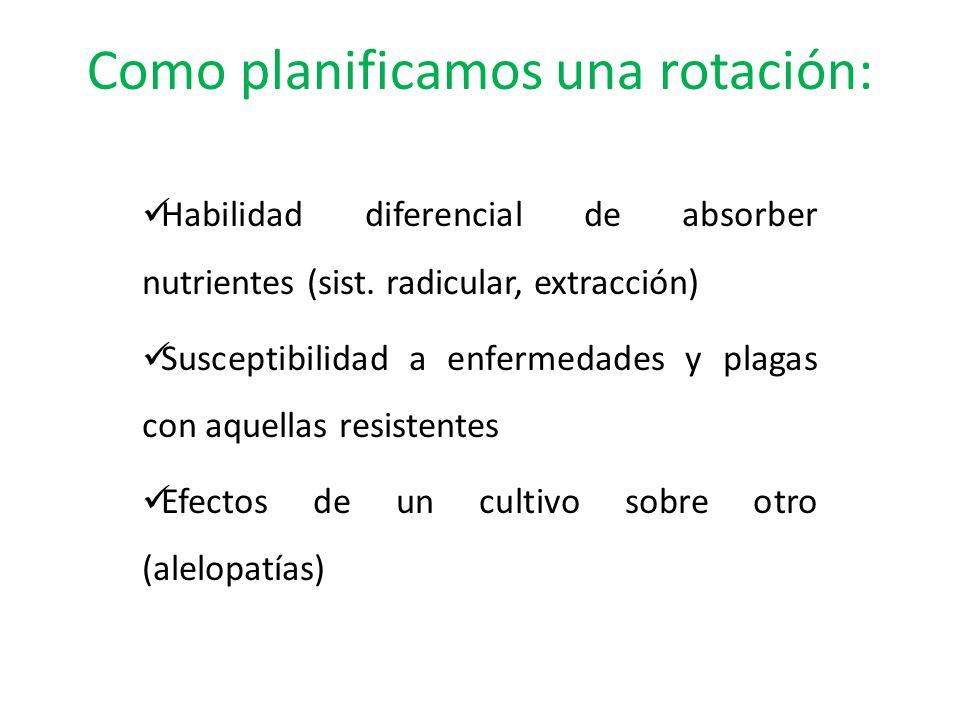 Como planificamos una rotación: