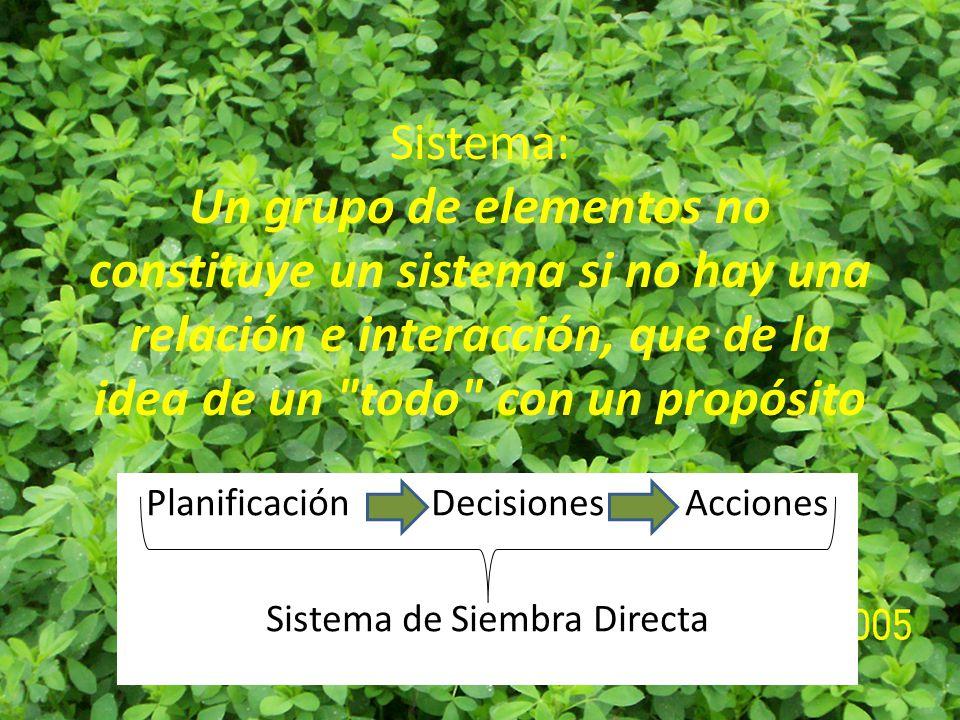 Planificación Decisiones Acciones Sistema de Siembra Directa