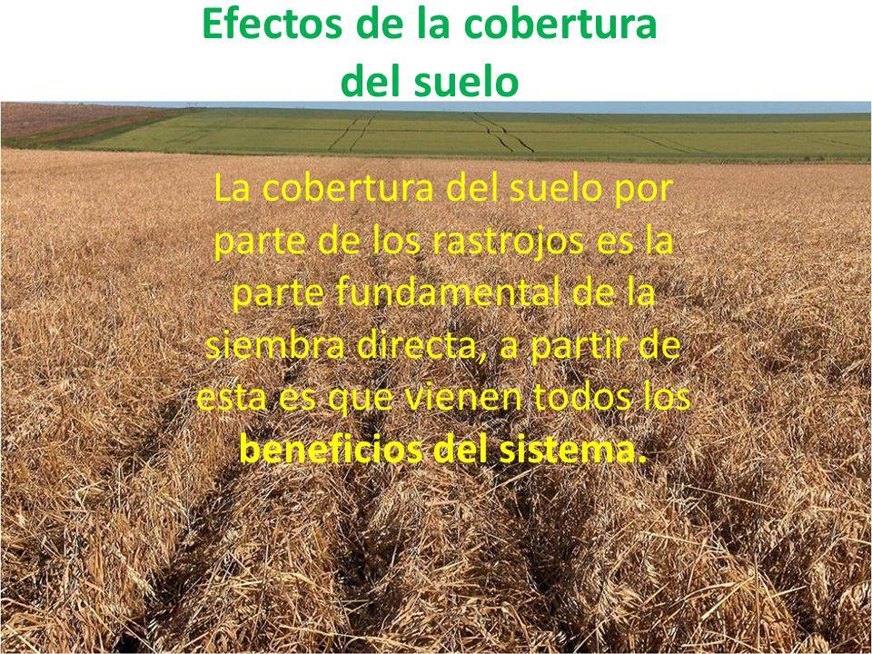 Efectos de la cobertura del suelo