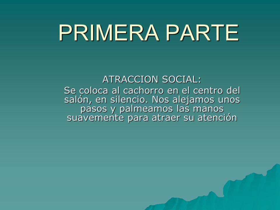 PRIMERA PARTE ATRACCION SOCIAL: