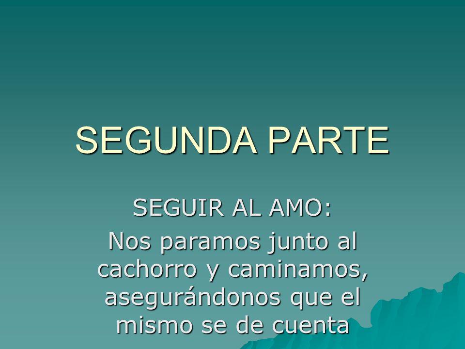 SEGUNDA PARTE SEGUIR AL AMO: