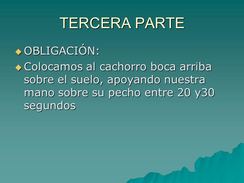 TERCERA PARTE OBLIGACIÓN: