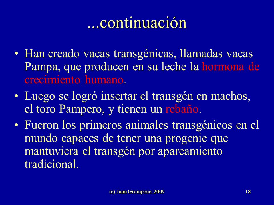 ...continuación Han creado vacas transgénicas, llamadas vacas Pampa, que producen en su leche la hormona de crecimiento humano.