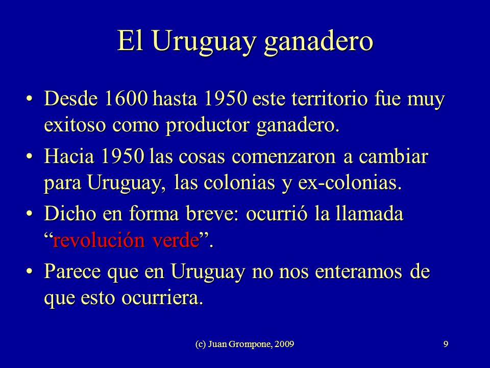 El Uruguay ganadero Desde 1600 hasta 1950 este territorio fue muy exitoso como productor ganadero.