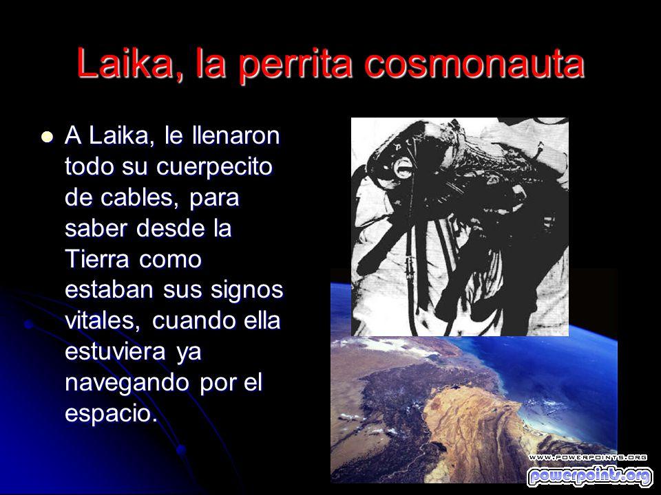 Laika, la perrita cosmonauta