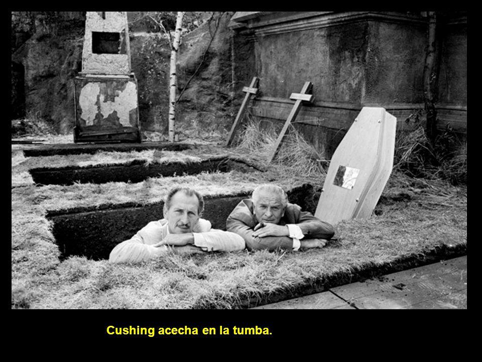 Cushing acecha en la tumba.