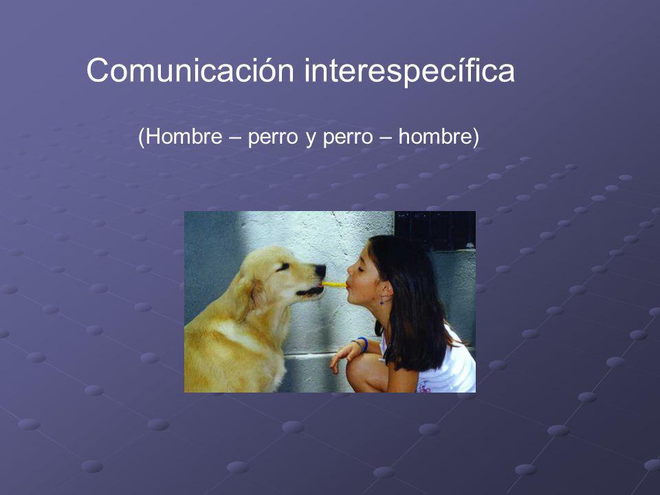 Comunicación interespecífica