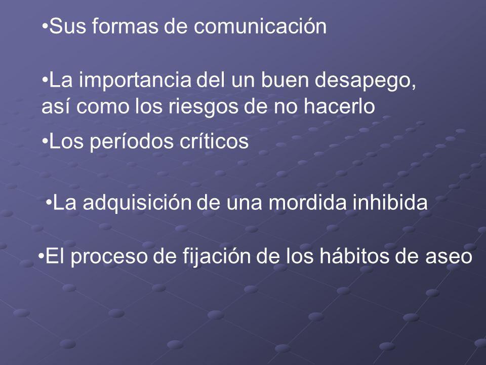 Sus formas de comunicación