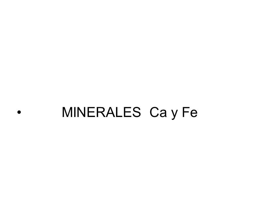 MINERALES Ca y Fe