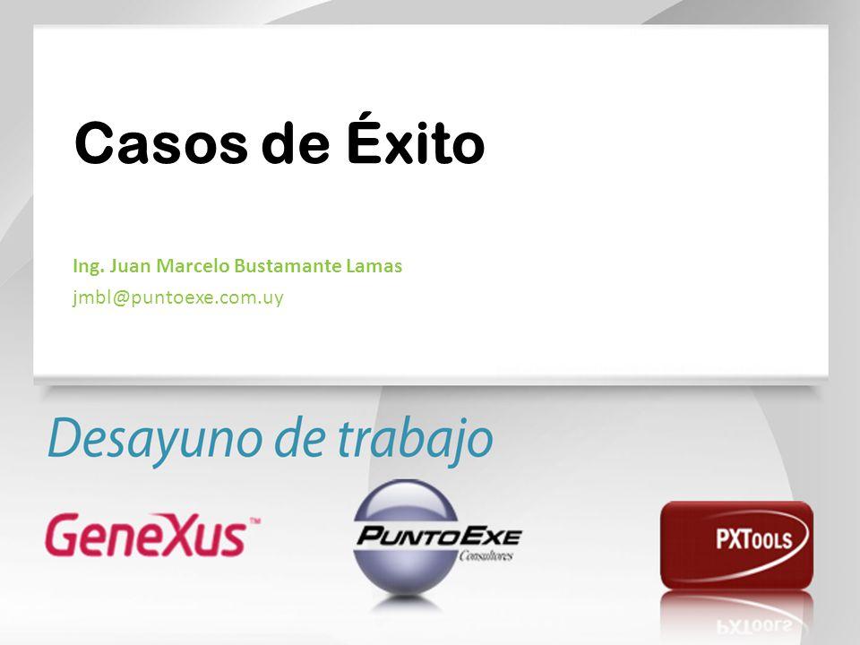 Ing. Juan Marcelo Bustamante Lamas jmbl@puntoexe.com.uy