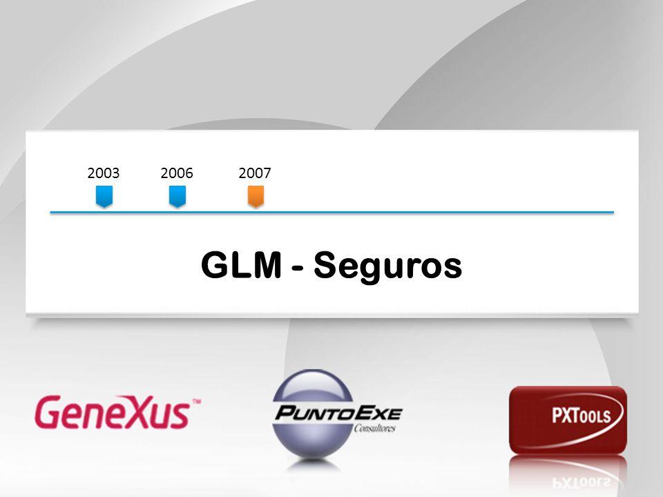 2003 2006. 2007. GLM - Seguros.