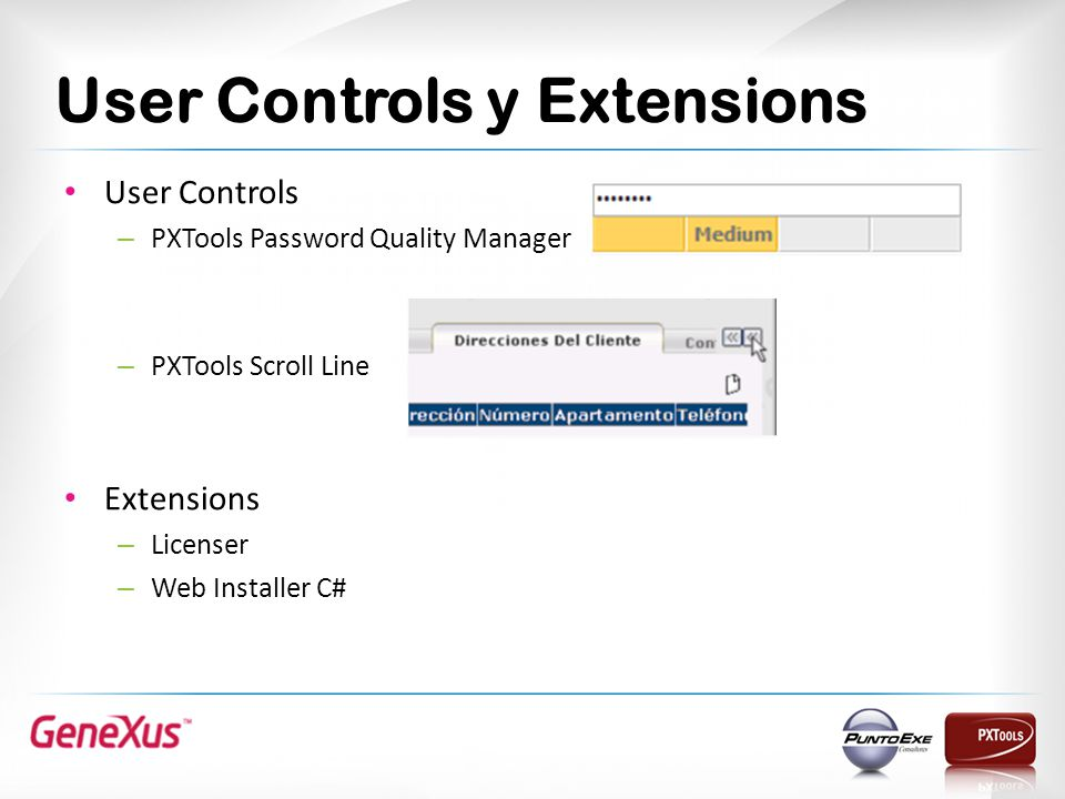 User Controls y Extensions