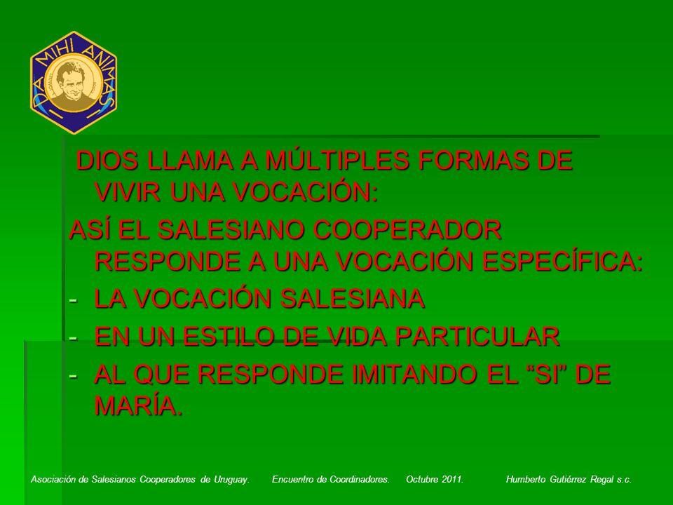 DIOS LLAMA A MÚLTIPLES FORMAS DE VIVIR UNA VOCACIÓN: