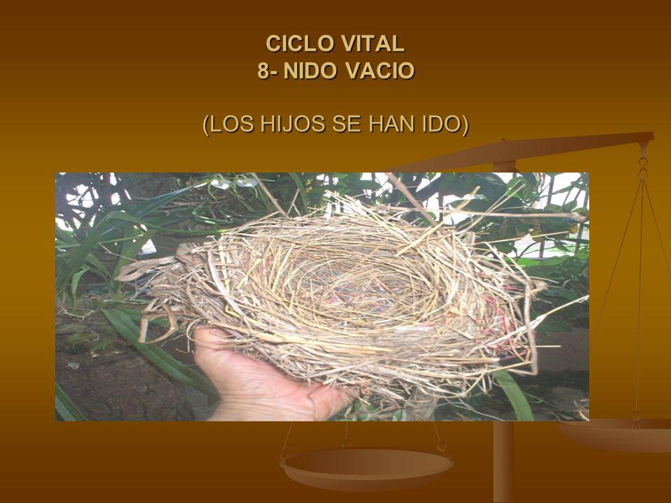 CICLO VITAL 8- NIDO VACIO (LOS HIJOS SE HAN IDO)